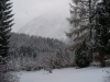 winter-05_0